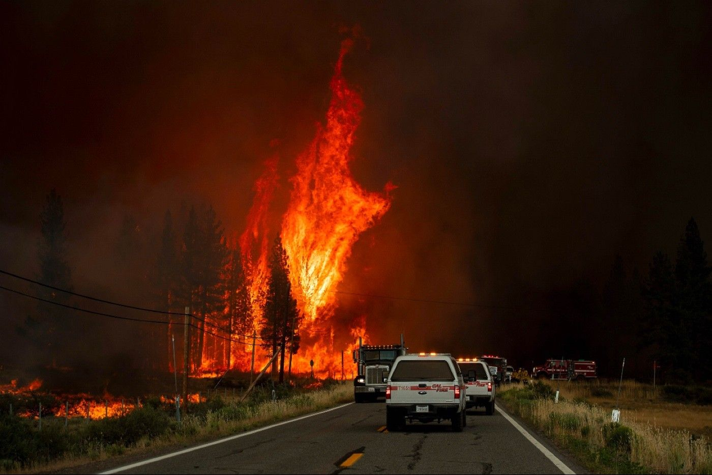 Flames rip through trees in Susanville, Calif.