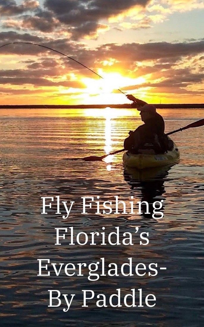Fly Fishing Florida's Everglades by Paddle