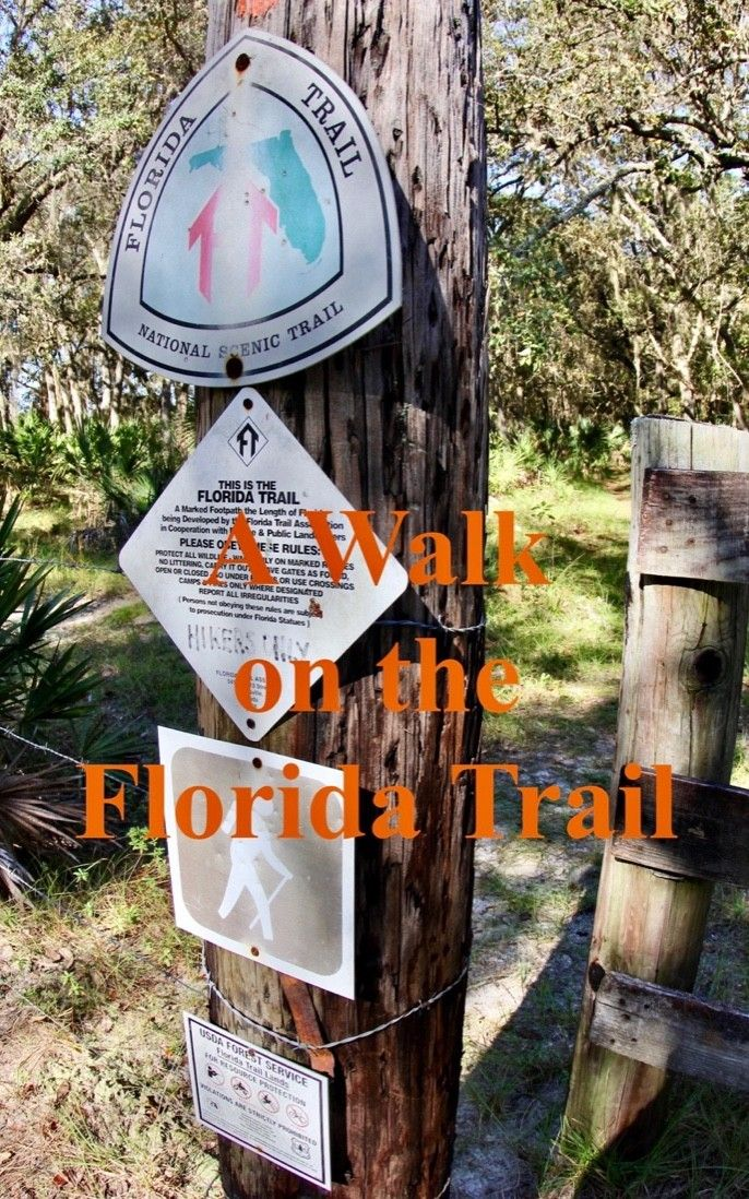 The Florida Trail