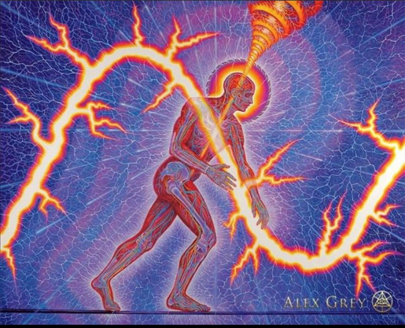 'Lightworker' (2012), oil on linen, by Alex Grey.