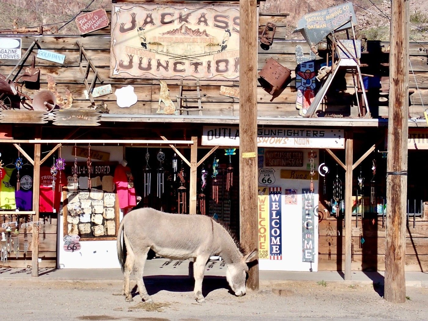 Because of the burros, people will refer to Oatman as Jackass Junction. This store sells burro food, of course.