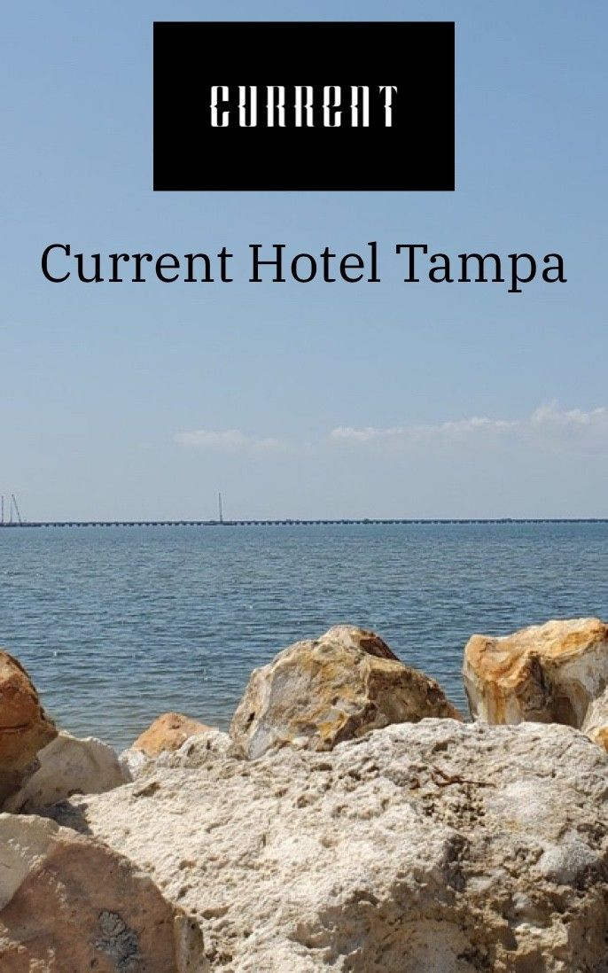 My stay at the Current Hotel in Tampa Bay Florida